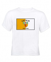 White T-Shirt - Full Chest GAA Flag - Front