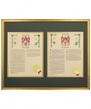 Personalized 16 x 20 Gold Frame His & Her Coat of Arms With last Name History Matted & Framed Print